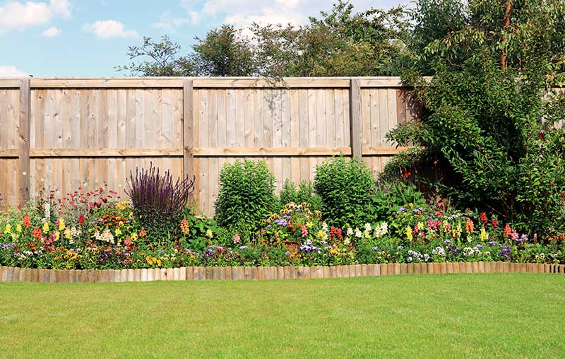 Garden with Fence & Flowers